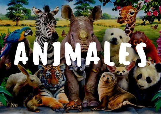 juego de mesa de animales